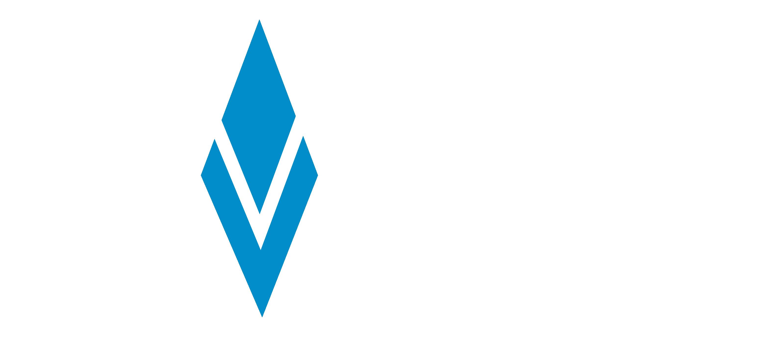 Bavarian Value Logo