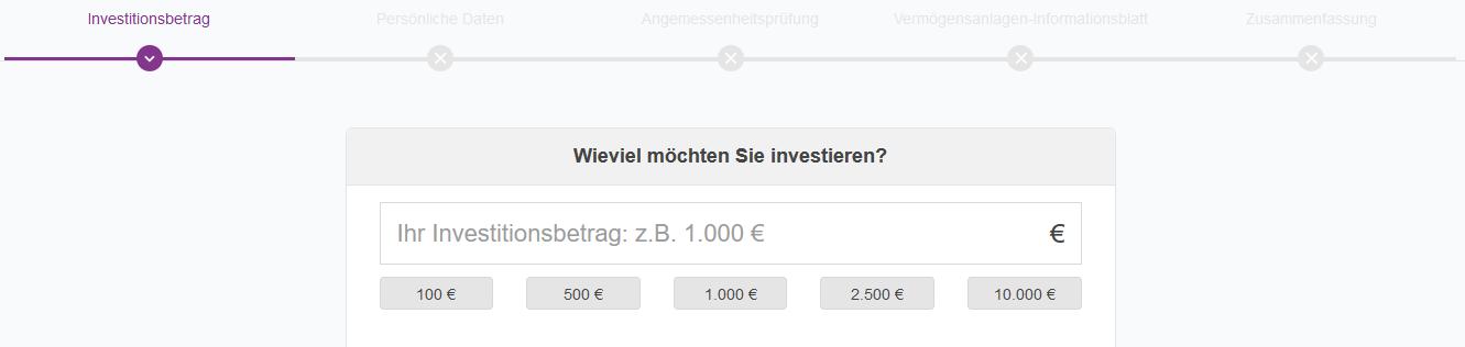 Investitionsbetrag
