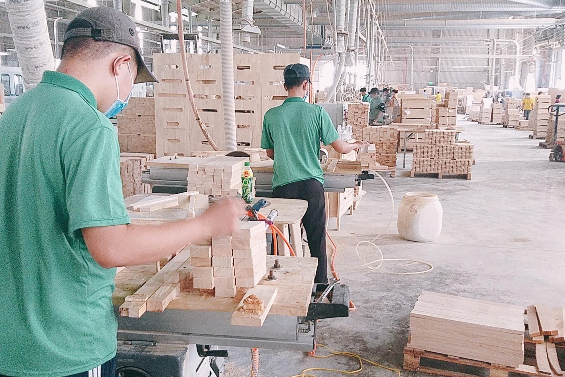 Nachhaltig Investieren: Tay Ninh Produktionsstätte