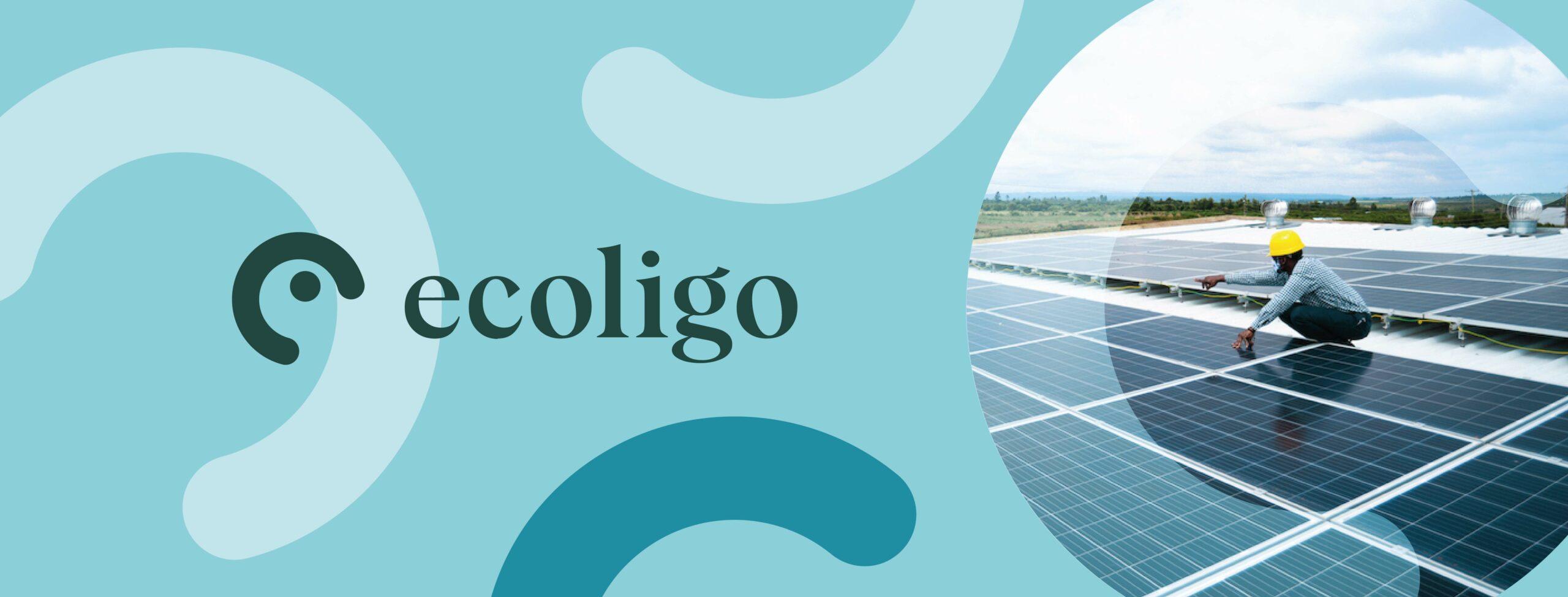 ecoligo cover image